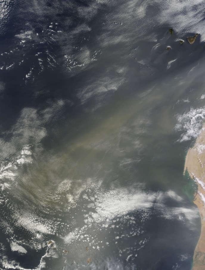 Aux Antilles, des naissances prématurées amplifiées par le phénomène des brumes de sable