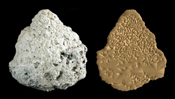Un nid de termites et une coupe, réalisée par tomographie.