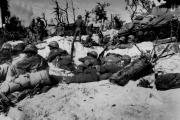Sur l'île de Peleliu, le jour du débarquement américain, le 15 septembre 1944.