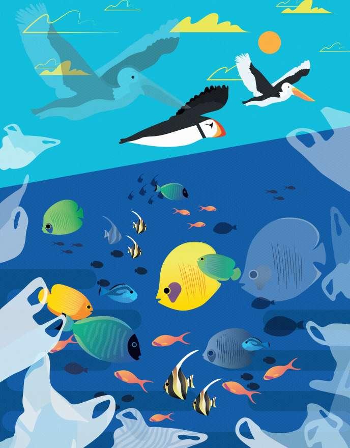 «Les populations de certaines des créatures les plus emblématiques de l'océan, par exemple le thon rouge du Pacifique ou la tortue luth, ont déjà décliné de façon catastrophique»