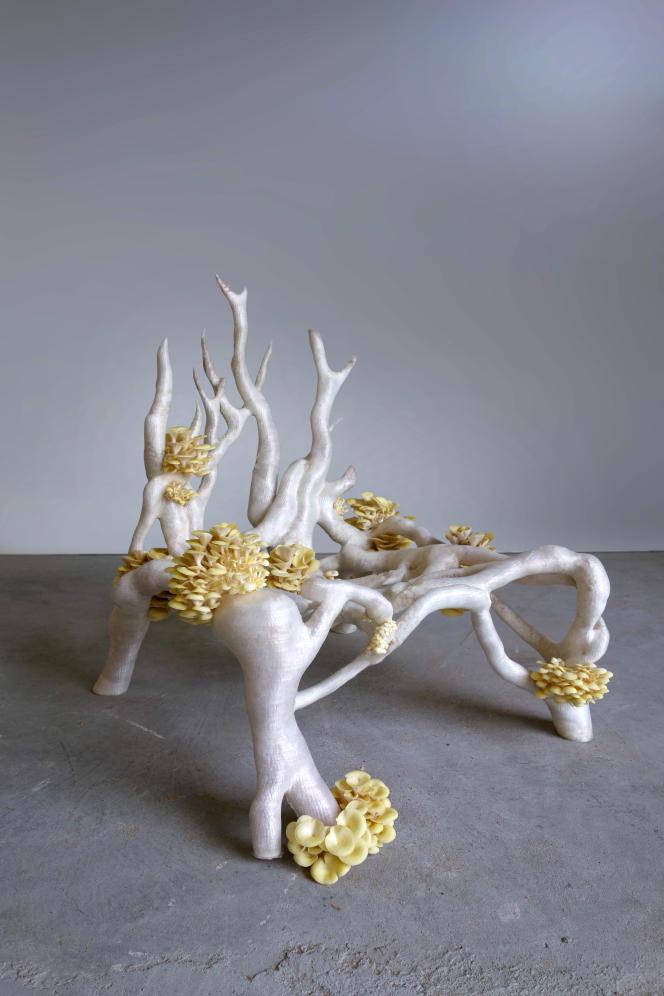 La Mycelium Chair du Studio Klarenbeek & Dros est née en imprimant en 3D du mycélium de champignons (reishi).