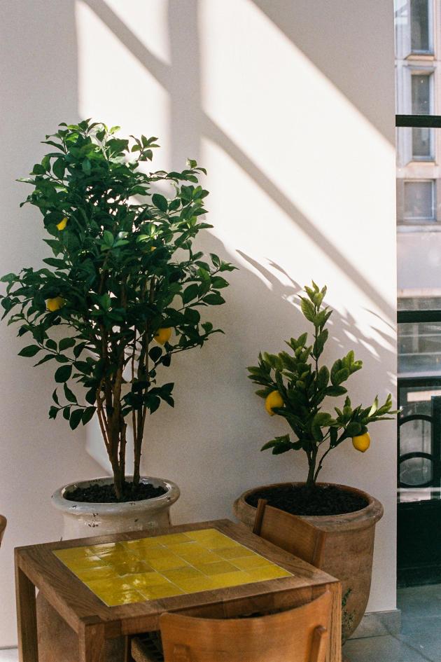 Le café Citron imaginé par le styliste Jacquemus.