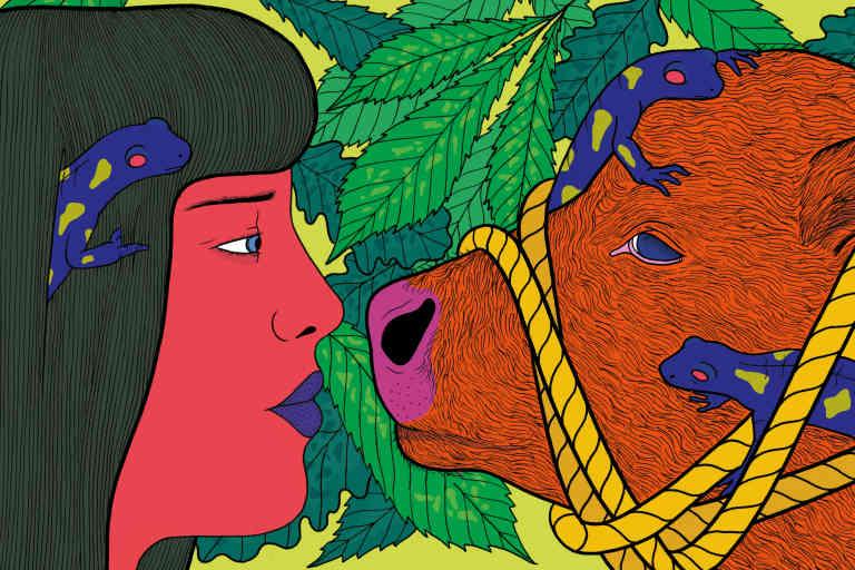 L'animalisme va-t-il trop loin ? dessin Fanny Michaelis, papier Catherine Vincent