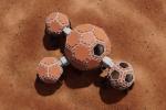 Le projet Mars Incubator, finaliste du concours3D-Printed Habitat Challenge organisé par la NASA.