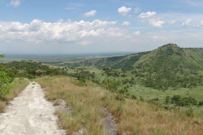 Le parc national Queen Elizabeth, en Ouganda.