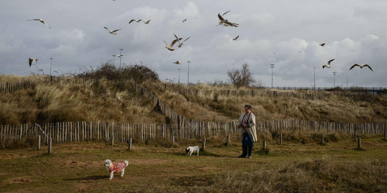 Une femme se proméne avec ses chiens sur la plage de Ouistreham. En arriére plan le port des ferrys. Ouistreham. Normandie. France.