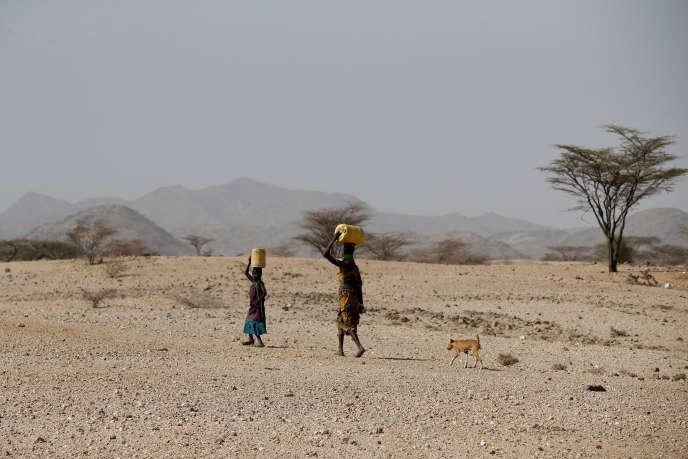 Non loin de la ville de Lodwar, dans la région du Turkana, dans le nord du Kenya, en février 2018.
