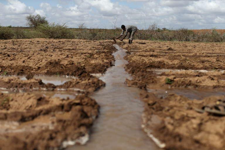 Un agriculteur travaille dans son champ près du village de Botor, au Somaliland, en avril 2016.