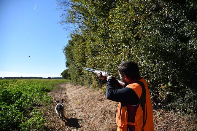 Ouverture de la chasse dans la Sarthe, en septembre 2018.