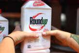 Pesticides: l'Union européenne impose une plus grande transparence dans l'évaluation des risques