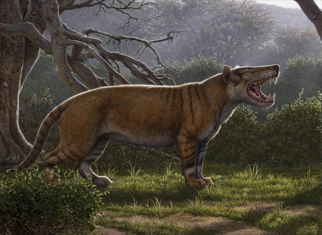 L'inquiétant animal a été baptisé «Simbakubwa kutokaafrika» (pour «grand lion d'Afrique»).