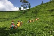 « L'Air du temps» au Rwanda.