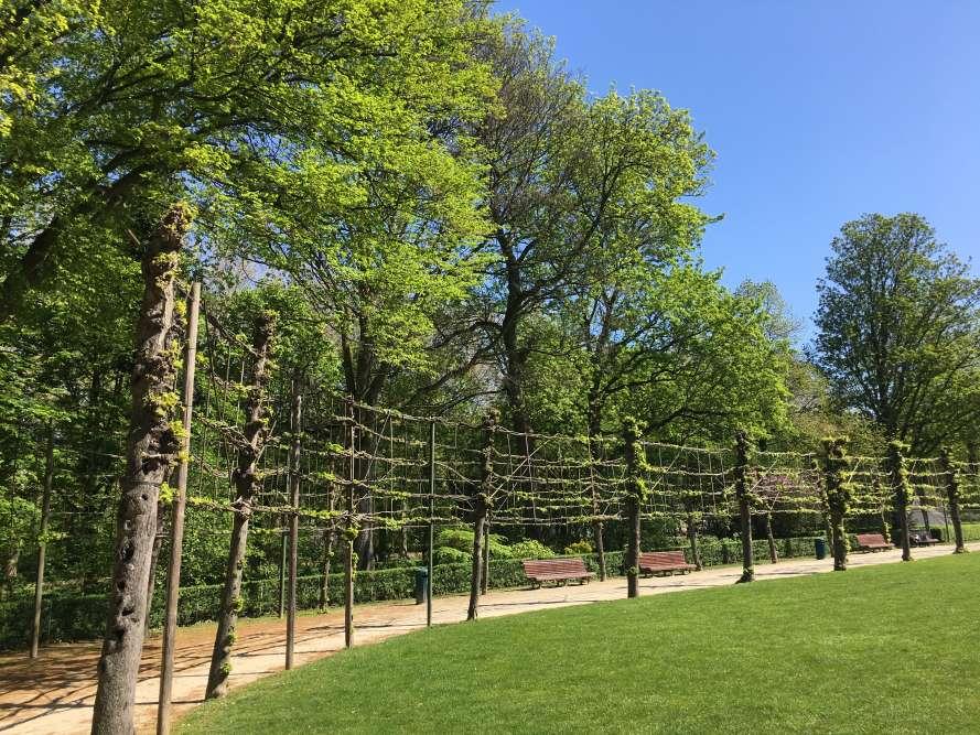 Le parc du Cinquantenaire a été commandé, comme les Serres royales, par Léopold II, pour célébrer la prospérité de la Belgique cinquante ans après son indépendance. L'imposante architecture en U qui le domineabrite plusieurs musées, dont le très riche Musée Art et Histoire.