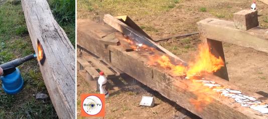 Plusieurs autres internautes ont tenté de mettre feu à des morceaux de chêne, sans succès.