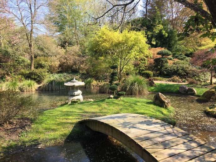 Le jardin du Soleil-Levant.