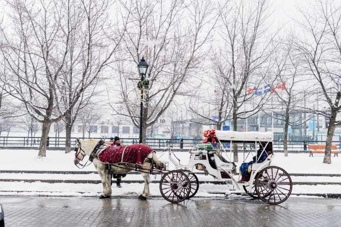 La balade en calèche est une attraction touristique prisée à Montréal (Canada).