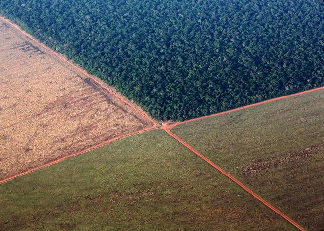 La forêt amazonienne (en haut), bordée par des terres déboisées pour la plantation de soja, dans l'ouest du Brésil, en octobre 2015.