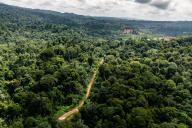 Vue aérienne de l'emplacement retenu pour installer le camp de base de la mine de la«Montagne d'or», en Guyane.