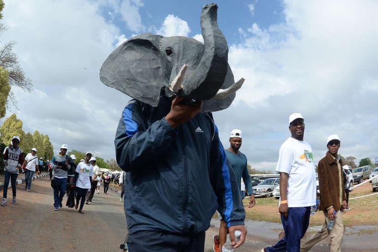 Lors d'une marche pour la protection des éléphants, des rhinocéros et des lions, à Gaborone, au Botswana, le 7octobre 2017.
