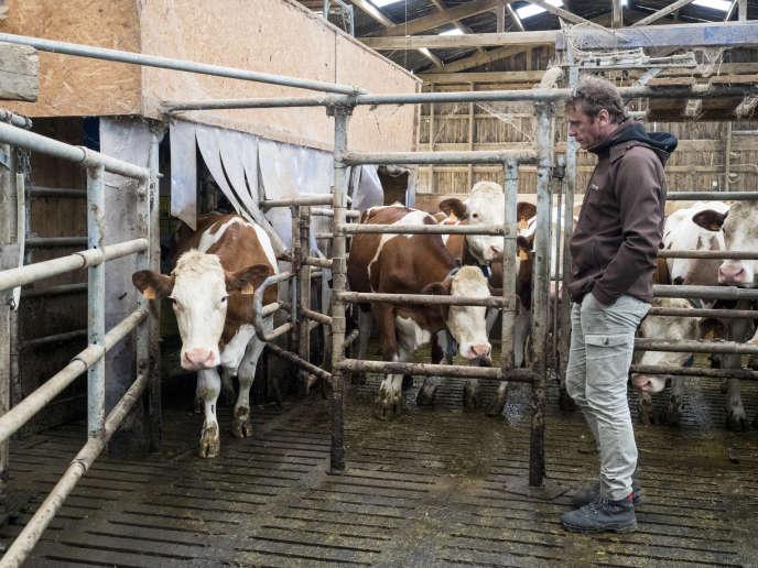 L'éleveur laitier Benoît Boivin dans sa ferme à Angirey (Haute-Saône), le 8 mai.