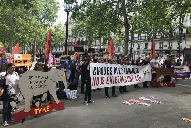 Mobilisation pour demander l'interdiction de cirques utilisant des animaux sauvages, à Paris le 16 mai.