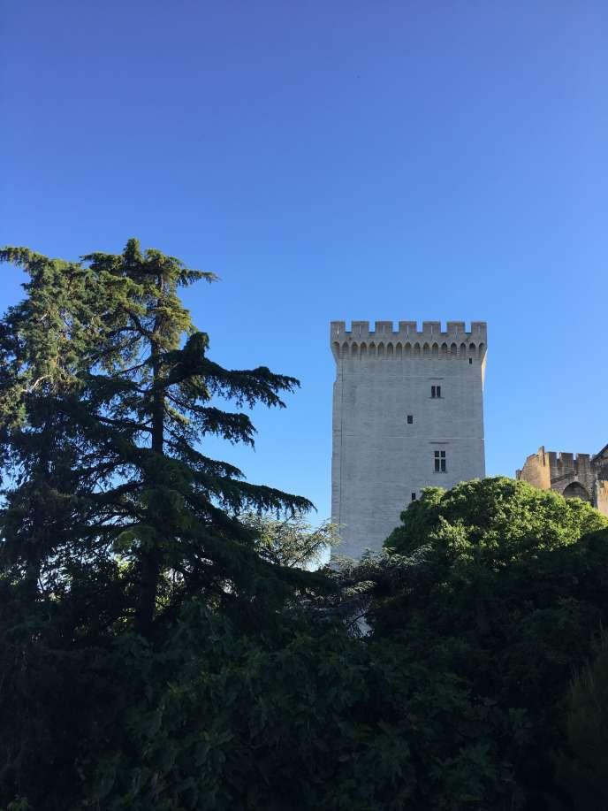 Vue, depuis les jardins, d'une des tours du Palais des papes, à Avignon.