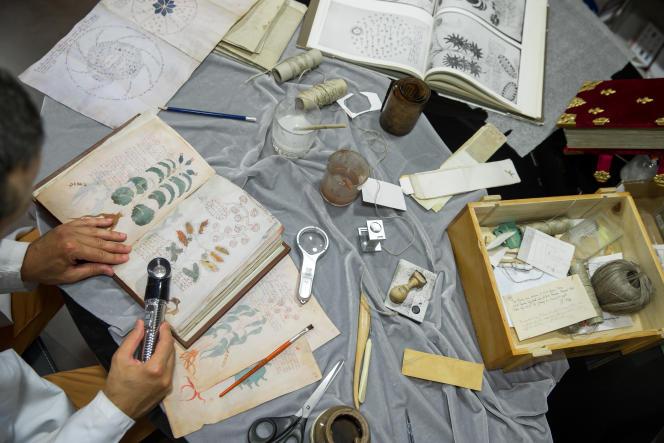 Le manuscrit Voynich contient d'intrigantsdessins de plantes non repertoriées.