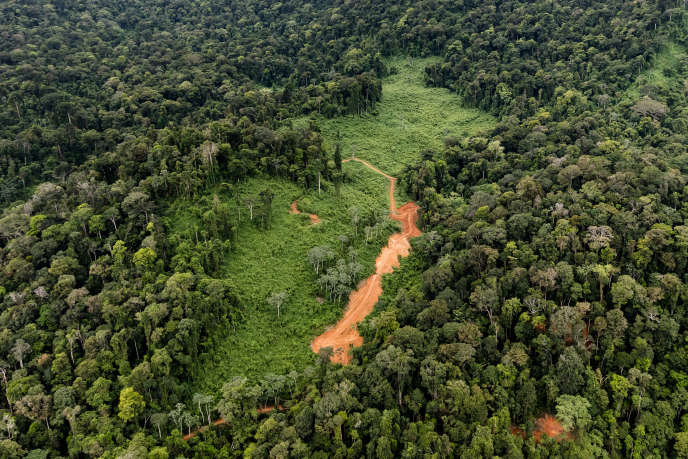 Vue aérienne du site prévu pour le projet de la «Montagne d'or», en mai 2017, en Guyane.