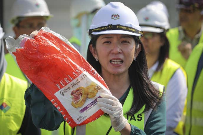 « Nous ne nous laisserons pas intimider par les pays développés », a lancéYeo Bee Yin, la ministrechargée de l'énergie, de l'environnement et des sciences malaisienne.