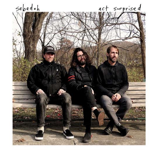 Pochette de l'album « Act Surprised », de Sebadoh.