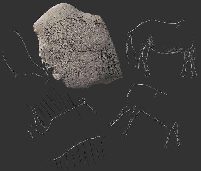 Plaquette de grès vieille de 12 000 ans comportant des gravures représentant des animaux (chevaux, aurochs, cervidé), découverte à Angoulème en décembre 2018.