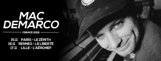 Affiche de la tournée française de Mac DeMarco.