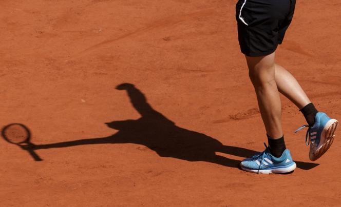 « Les mesures de confinement en vigueur rendent impossible la préparation du tournoi et, par conséquent, son organisation aux dates initialement prévues », a expliqué la Fédération française de tennis.
