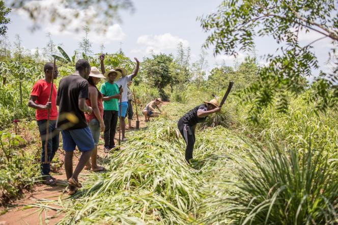 Atelier de l'association Les Jardins de l'espoir, installée àTori-Bossito, à une dizaine de kilomètres de Cotonou, dans le sud du Bénin, qui organise des agro-boot camp pour apprendre une agriculture respectueuse de l'environnement.
