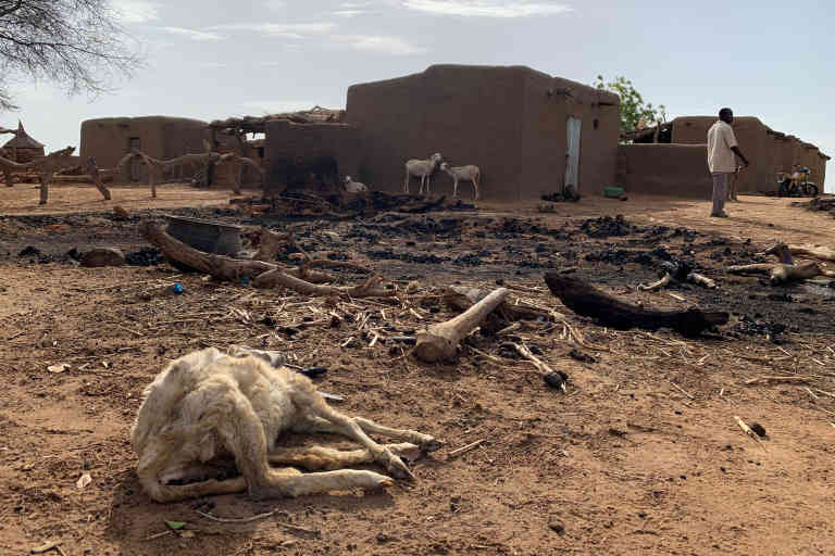 A dead animal is seen amidst the damage at the site of an attack on the Dogon village of Sobane Da, Mali June 11, 2019. Picture taken June 11, 2019. REUTERS/Malick Konate  NO RESALES. NO ARCHIVES.      TPX IMAGES OF THE DAY