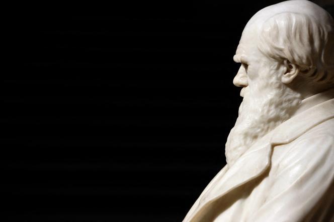 Une statue de Charles Darwin, qui causa tant de tort à bien des croyances, au Natural History Museum, à Londres.