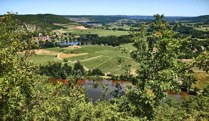Les vignes en terrasses de cahors et la rivière du Lot, vues depuis le col de Crayssac.
