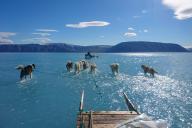 Photographie prise par le scientifique danois Steffen Olsen, le 13 juin dans le fjord d'Inglefield (Bredning), au nord-ouest du Groenland.