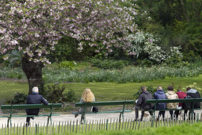 Le poème « Destination : arbre», d'Andrée Chedid était proposé en commentaire detexte aux ES-S lundi 17 juin.