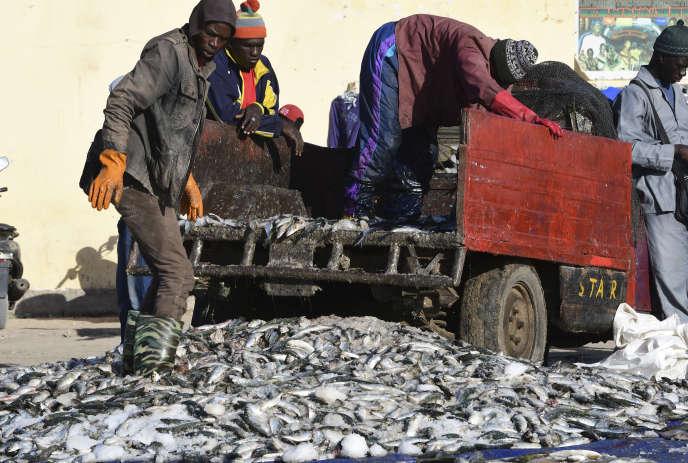 Pêcheurs sénégalais et mauritaniens après une pêche au large de Nouakchott, en janvier 2019.
