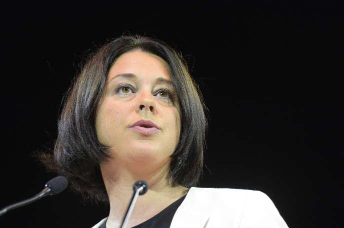 Am 2. April 2014 wurde Sylvia Pinel zur Ministerin für Wohnungswesen und territoriale Gleichstellung ernannt, um Cécile Duflot zu ersetzen. Das Pinel-Gesetz tritt am 1. Januar 2015 an die Stelle des Duflot-Gesetzes.