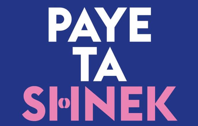 Le Tumblr Paye ta shnek a été lancé en 2012, par la militante indépendante Anaïs Bourdet.