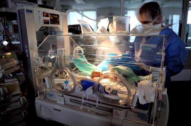 Un médecin s'occupe d'un bébé prématuré dans un incubateur du service néonatal du centre hospitalier de Lens, le 4 décembre 2013.
