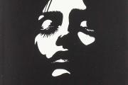 «Nouveaux visages», de Danzy Senna, traduit de l'anglais (Etats-Unis) par Yoann Gentric, Editions Actes Sud, 224p., 22€.