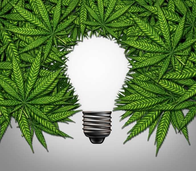 « Certaines autorités nationales légalisent le cannabis pour les adultes, alors que d'autres encouragent leurs polices et des milices à tuer les consommateurs et les trafiquants en dehors de toute procédure légale»