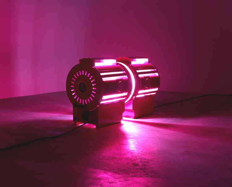 «Deux projecteurs de cinéma peints en rose se font face et semblent s'embrasser : la lumière et la chaleur qu'ils diffusent les transforment en organismes vivants, liés par des ondes intemporelles, intimes, sensuelles et incandescentes. Le choix des projecteurs de cinéma renvoie au désir et aux histoires d'amour qui peuvent naître dans les films et les salles obscures. Le titre est, quant à lui, une référence directe aux grands baisers de l'histoire de l'art, tels que ceux de Rodin, Klimt ou Brancusi.»