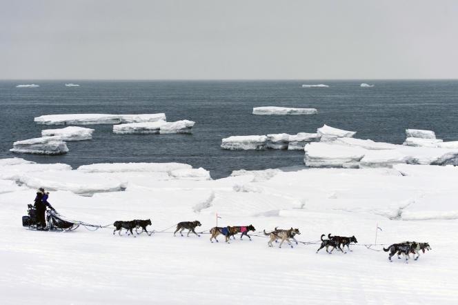 Le 13 mars 2019, Jessie Royer passe devant un iceberg en eau libre sur le détroit de Norton à l'approche de Nome, en Alaska, dans la course de chiens de traîneau du sentier Iditarod.