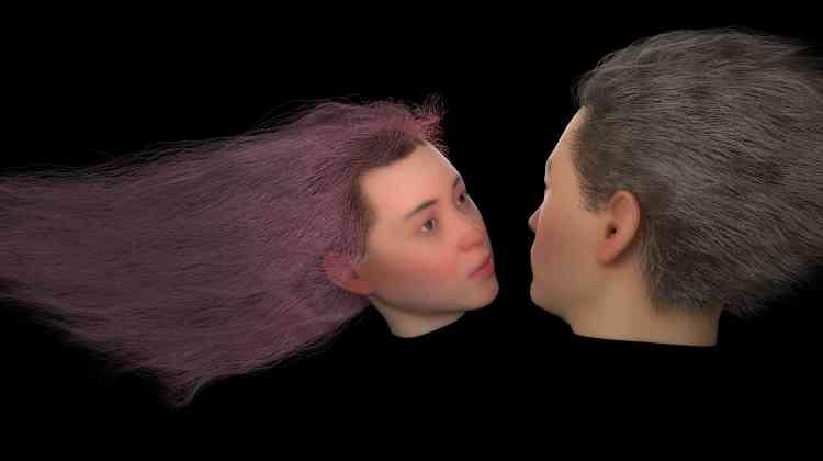 «Deux visages en 3D flottent dans un environnement noir, tel un aquarium virtuel. Ils se fixent, semblent graviter l'un vers l'autre, s'attirer, donnant l'illusion qu'ils vont s'embrasser. L'attente reste néanmoins déçue. La neutralité de leur expression reste immuable, ils ne se toucheront jamais.»