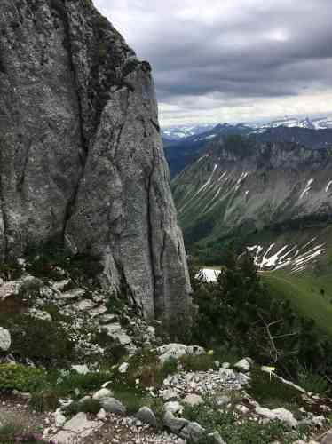 Situé à 2000mètres d'altitude, au-dessus de Montreux, ce jardin alpin a été créé en 1896.