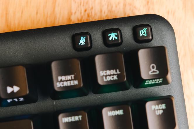 Un accès rapide à la mise en sourdine du micro et du volume: la meilleure fonctionnalité que l'on puisse attendre d'un clavier de cette taille.
